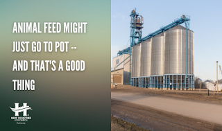 Animal Feed Might Just Go to Pot -- And That's a Good Thing