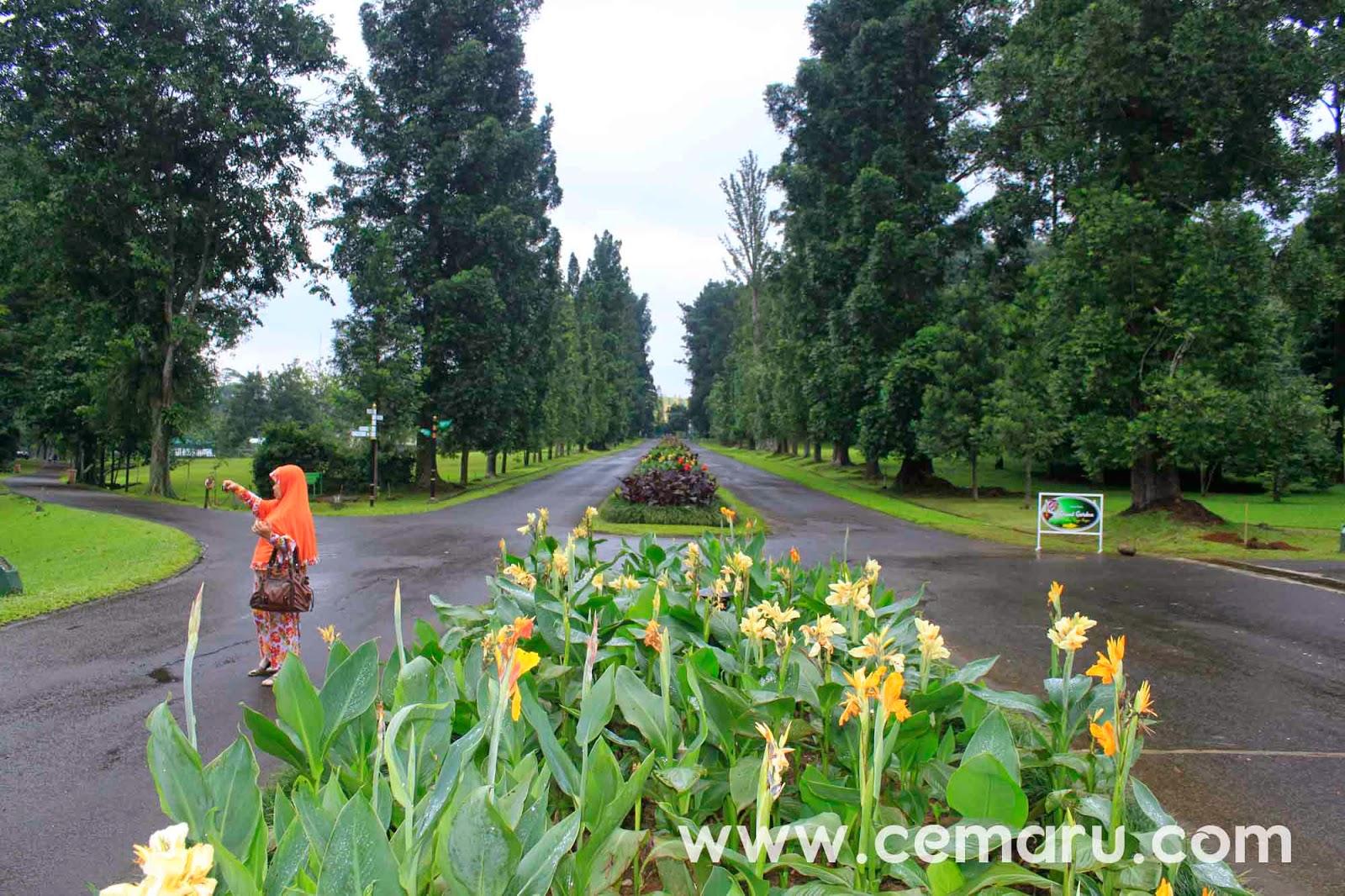 Jalan Astrid Kebun Raya Bogor