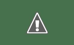 Kenapa SEO Begitu Penting Pada Blog/Web?