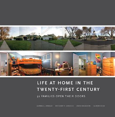 book cover - life at home in the twenty-first century