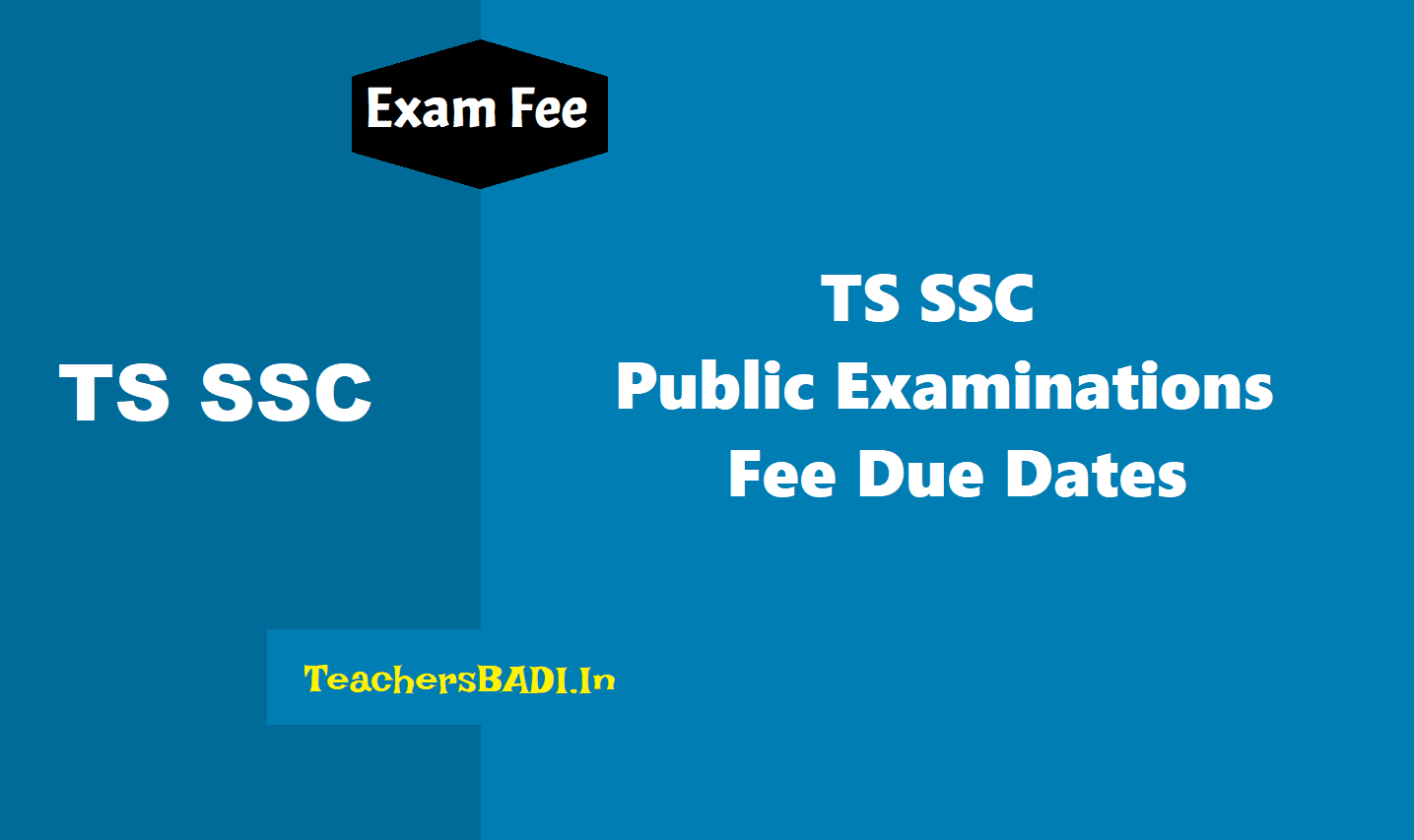 ts ssc 2020 exams fee dates,ssc march 2020 exams fee schedule,ts ssc exams 2020 fee dates,bse telangana ssc exams 2020 exams fee head of account,ddo code,ssc,ossc,vocational