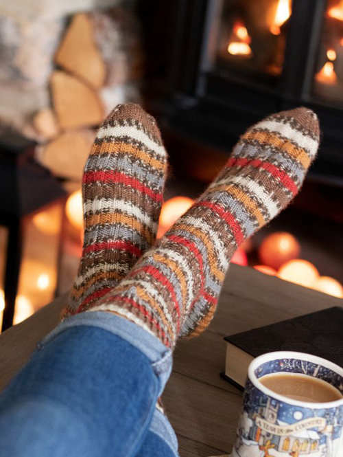 Christmas Robin Socks -  Free Pattern
