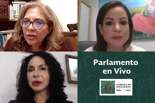 María de los Ángeles Huerta y Madeleine Bonnafoux expresan posturas sobre el informe anual de actividades 2020 de la CNDH