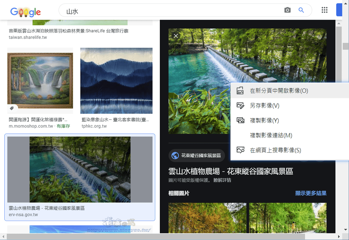 GooglePanicImages 擴充功能