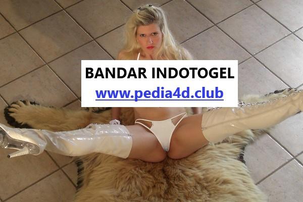 Situs Indotogel Paling Banyak Bonus