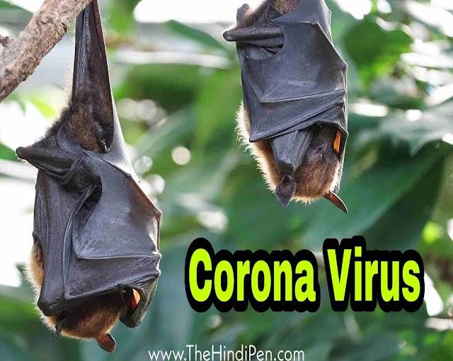 Coronavirus नाम कैसे आया, जाने कहां से आया यह जानलेवा वायरस