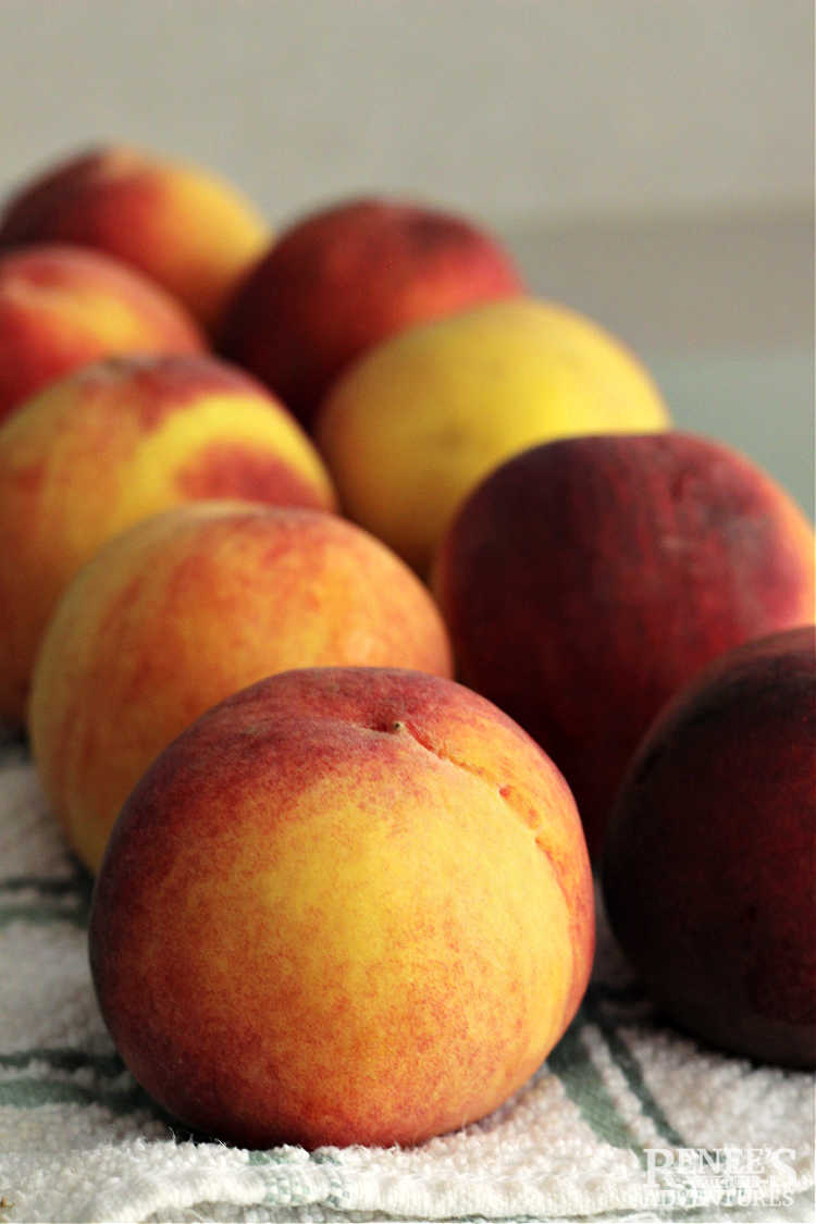 Fresh peaches lined up on cutting board
