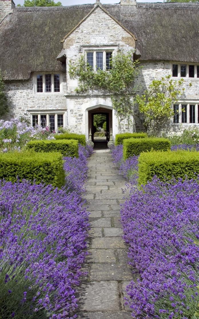 A 17th century farmhouse in Devon · lavender · Arne Maynard garden design · Lunch & Latte blog