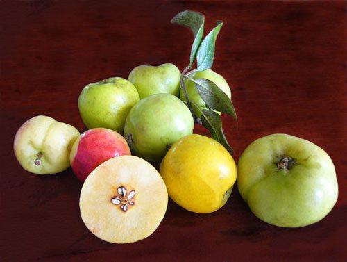 Bà bầu ơi đừng ăn mấy trái này nha!