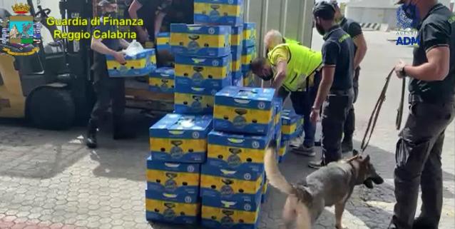 Maxi sequestro di oltre una tonnellata di cocaina nascosta in un carico di banane