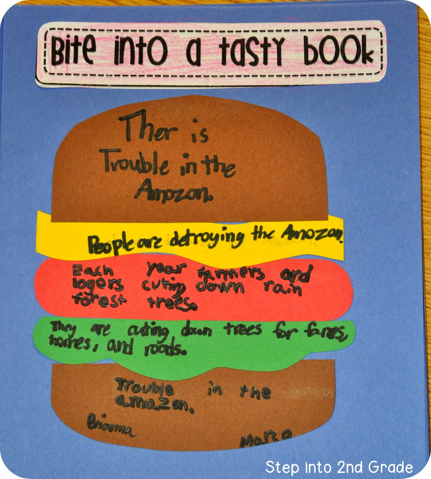 Nonfiction Main Idea Passages 2nd Grade