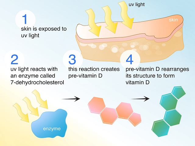 How To Get Vitamin D Levels Up Naturally