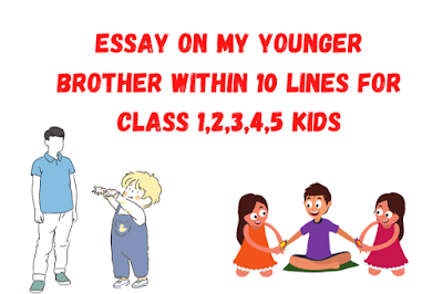 Essay on My Younger Brother