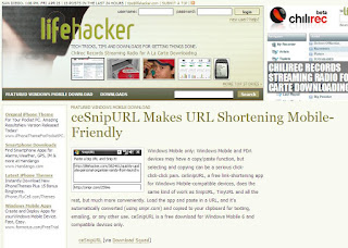 Lifehacker,most popular blog