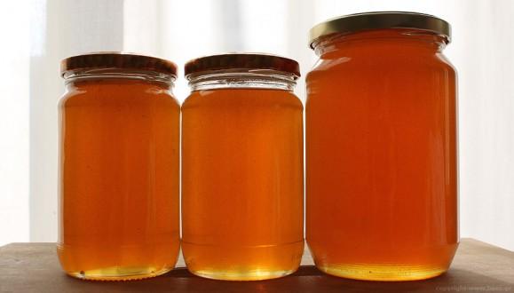 Έτσι Θα Διαπιστώσετε Αν Το Μέλι Που Αγοράσατε Είναι Νοθευμένο