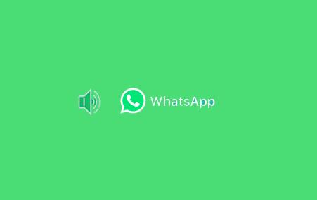 6 Cara Mengganti Nada Dering WhatsApp Android dan iOS/ iPhone