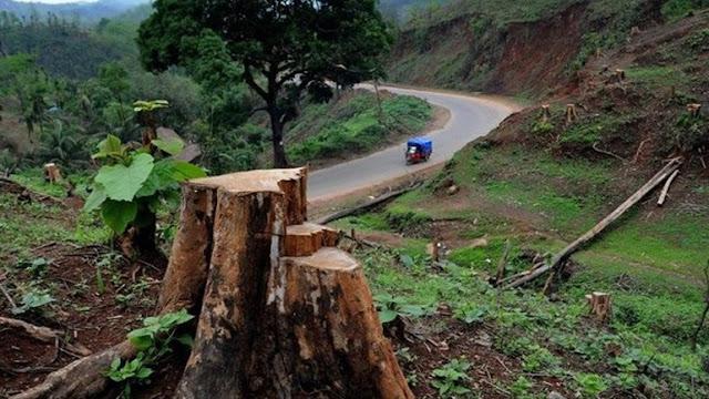 Περίπου 430 εκατομμύρια στρέμματα δασών, δηλαδή η έκταση μιας χώρας όπως το Ιράκ, χάθηκαν στα 24 κύρια «μέτωπα» της αποψίλωσης των δασών στον κόσμο στο διάστημα από το 2004 έως το 2017, σύμφωνα με έκθεση του Παγκόσμιου Ταμείου για τη Φύση (WWF) που δόθηκε σήμερα στη δημοσιότητα.