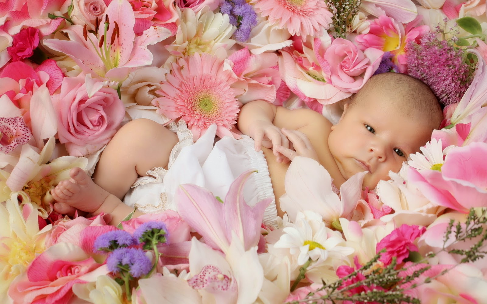 Popular Flower Baby Girl Name Ideas - Best Flowers Delivery