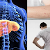 Signs And Causes Of Liver Damage That You Should Know Before It's Too Late