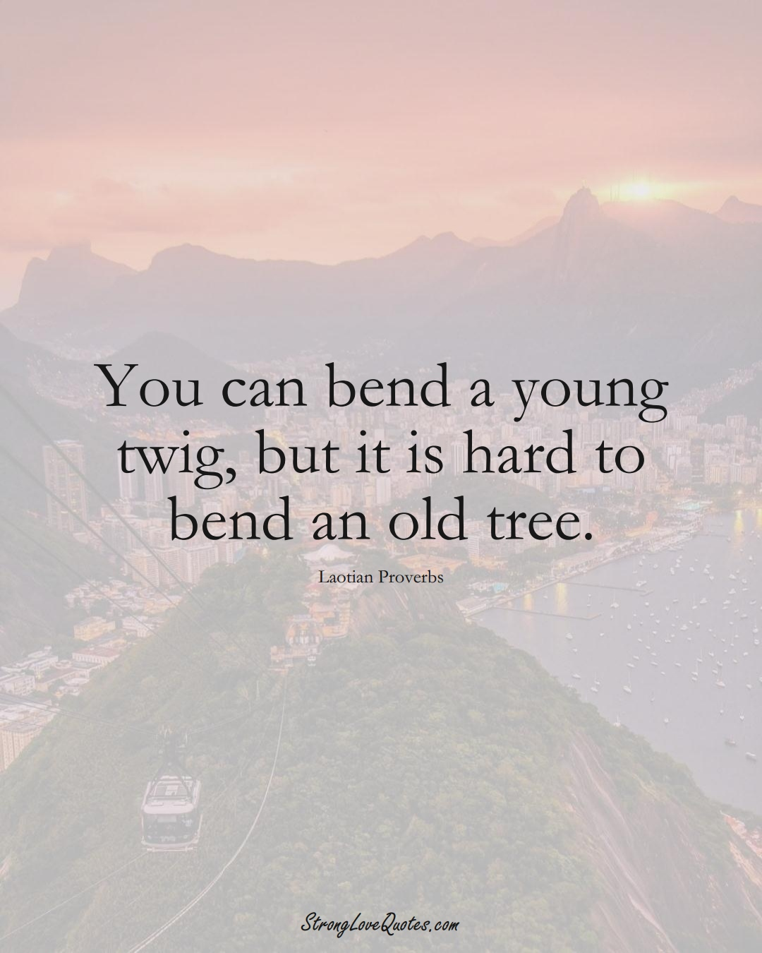 You can bend a young twig, but it is hard to bend an old tree. (Laotian Sayings);  #aVarietyofCulturesSayings