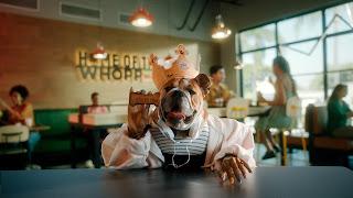 Burger King lança Whopper para cachorro, o Dogpper, e se une à Petlove em prol da causa