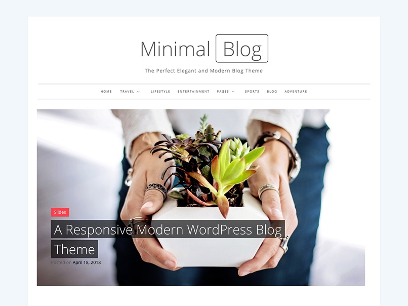 Minimal blog theme for affiliate marketing