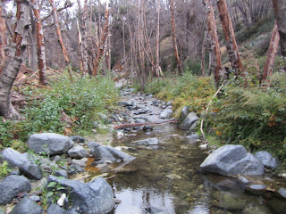 West Fork San Gabriel River