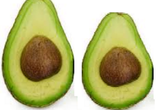 Serious Side Effects Of Avocados (Butter Fruit) By eating Avocado - Weight Gain