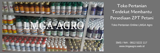merk zpt untuk cabe, super gib cair, hormon giberelin, jual zpt, toko pertanian, toko online, lmga agro