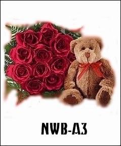 NWB-A3