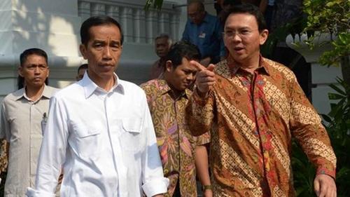 Pak Presiden Jokowi, Ahok Cocok Urusi Subsidi Pupuk