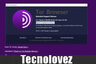 Tor Browser si aggiorna per correggere gravi vulnerabilità