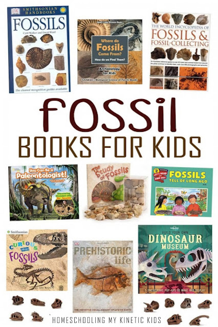 Books for learning about fossils!  And learn about long gone dinosaurs as you explore and play with Safari Ltd Dinosaur Skulls toob.  Free printable matching cards for the toob.