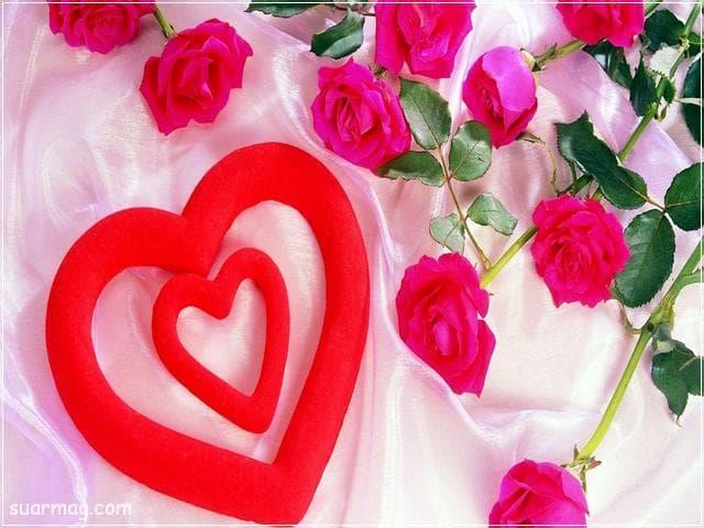 خلفيات ورود جميلة جدا 20 | Beautiful Roses Wallpapers 20