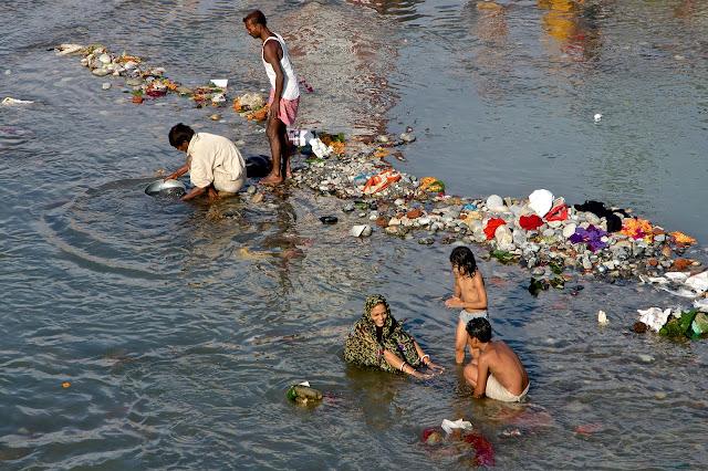 गंगा प्रदूषण पर NGT सख्त, कहा- 'कोई कुछ नहीं करना चाहता'