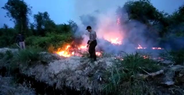 Karhutla Di Desa Perbangunan Sei Kepayang Terbakar