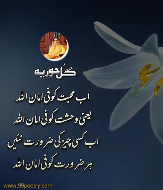Ab Mohabbat Ko Fe Amanullah - Gul Hooria New Latest Urdu Ghazal -Muhabbat Poetry
