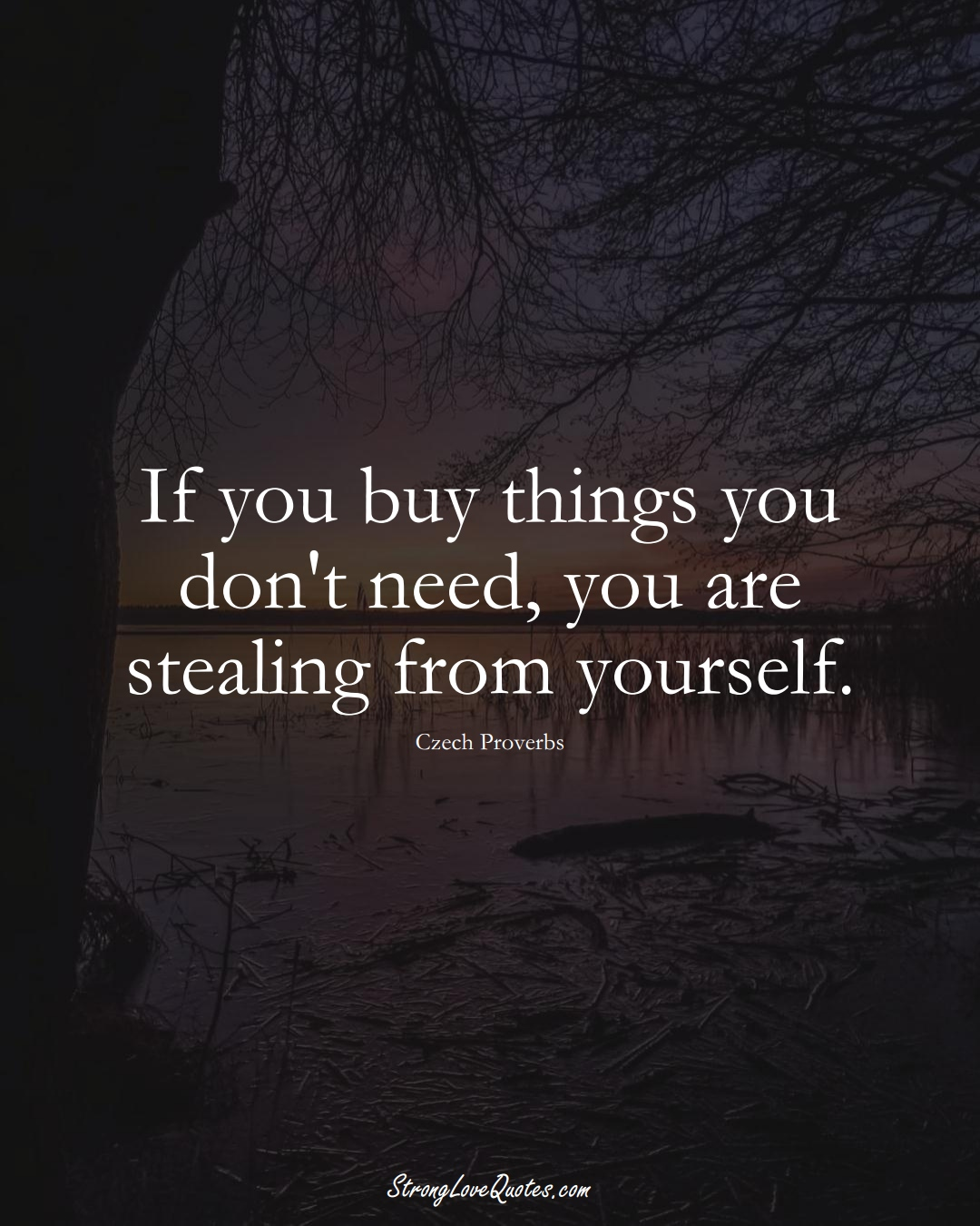 If you buy things you don't need, you are stealing from yourself. (Czech Sayings);  #EuropeanSayings