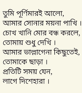 Tumi Purnimari Alo Lyrics Samz Vai