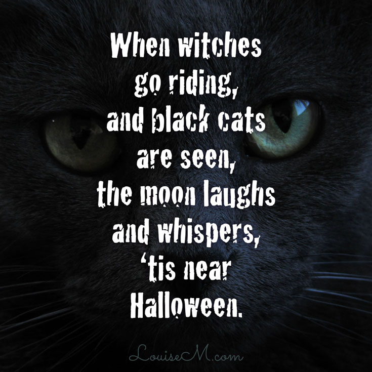 Halloween Quotes Cute, Funny, Scary 2017 | Happy Halloween Quotes ...