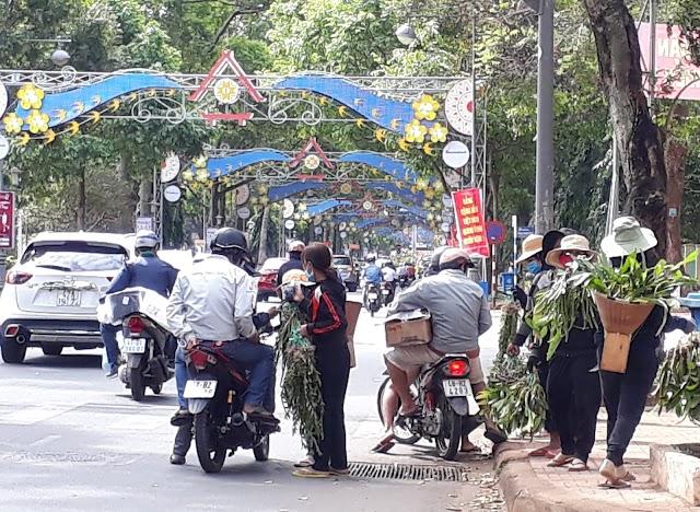 Chợ lan rừng nhộn nhịp trong phố ở Buôn Ma Thuột