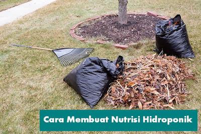 Cara Membuat Nutrisi Hidroponik