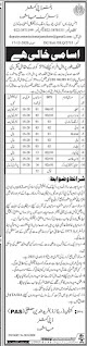 Latest Govt Jobs 2021 - District Jamshoro Jobs 2021 - Government of Sindh Jobs 2021
