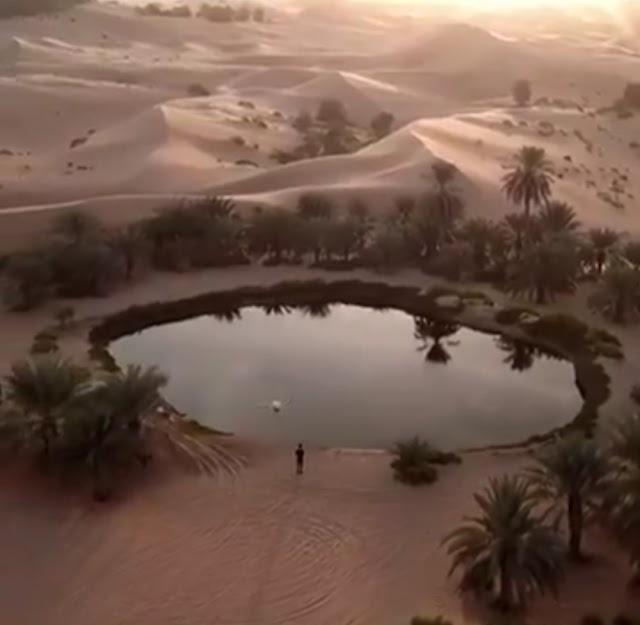 Video: ThisIsAbuDhabi