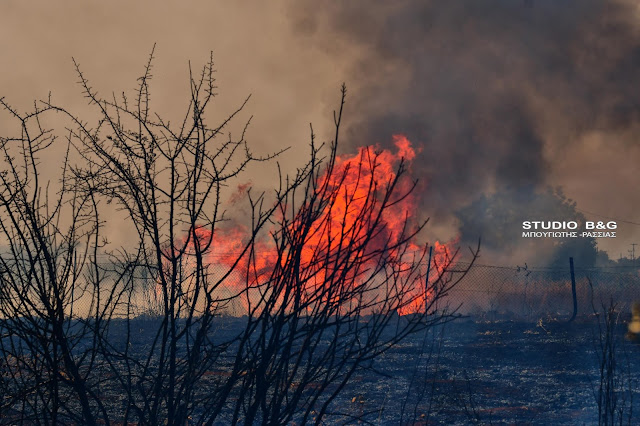 Πυρκαγιά στα Πυργιώτικα Ναυπλίου
