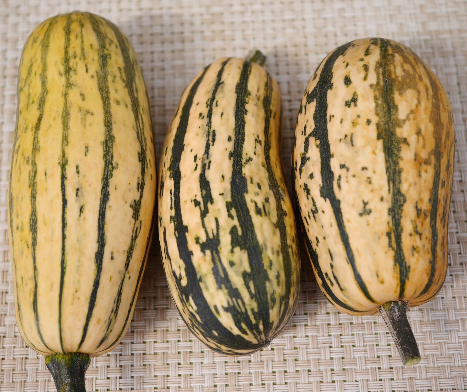 Foods For Long Life: Roasted Delicata Squash With