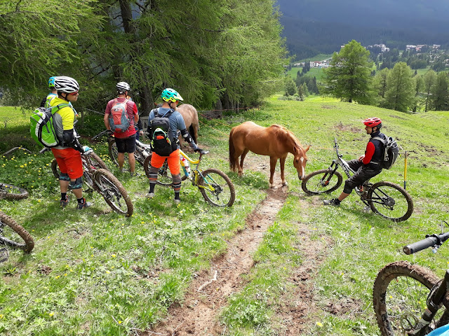Mountainbike Festival Dolomiten Rosengarten