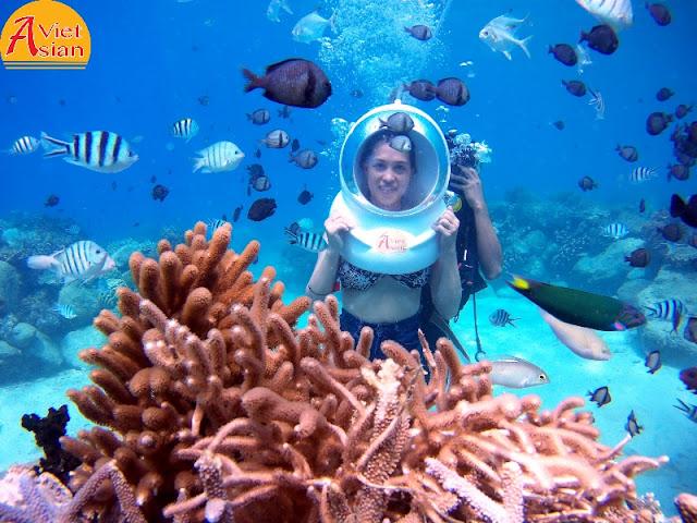 Tour Đi Bộ Dưới Biển kết hợp tour 4 đảo 05