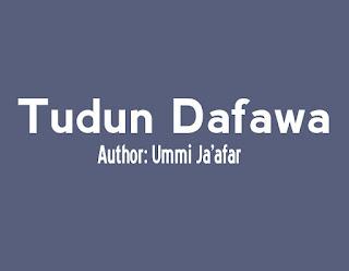 Tudun Dafawa