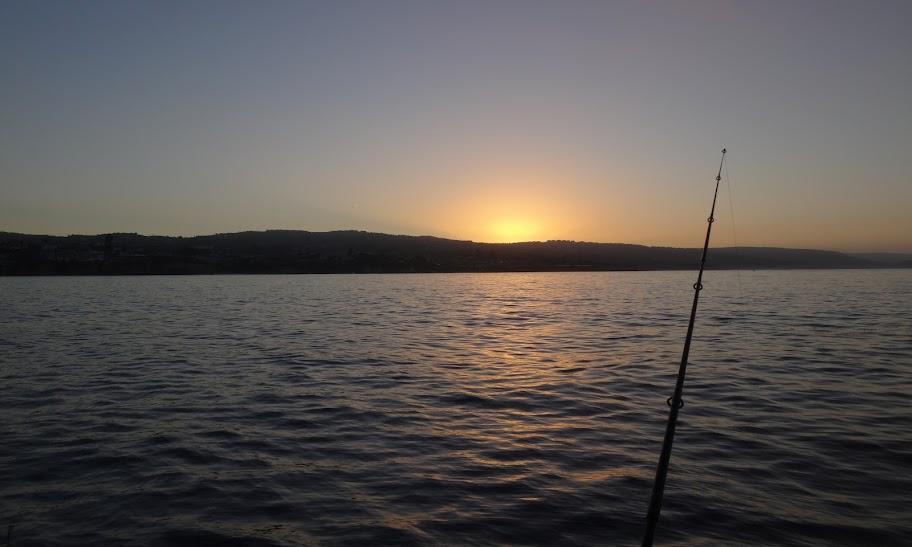 Ben Cantrell's fish species blog: Captain Eli and the California tuna